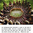 UBUNTU-I am because we are-An irresistible story