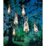 Living Accents 9017785 108 in. 10 Lights Incandescent Edison String Lights Clear
