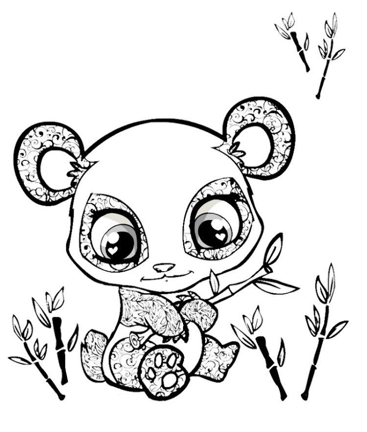 Cute Animals With Big Eyes Coloring Pages Coloring Pages