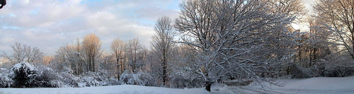 Snow_panoramic_12010