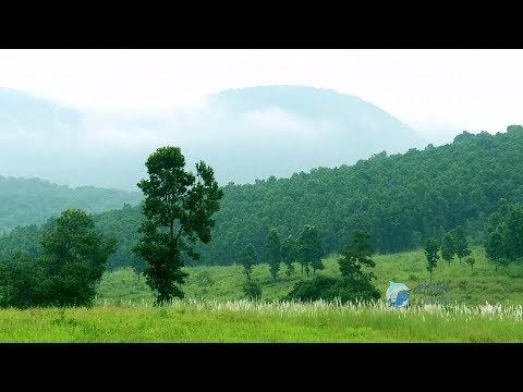 Wildlife Sanctuary - Similipal