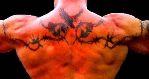 Birds Roses And Barbed Wire Tattoo