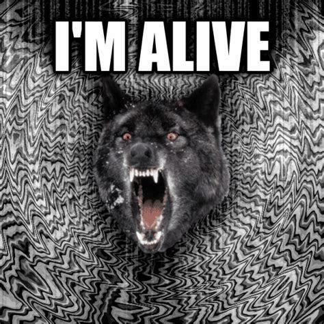 livememecom insanity wolf