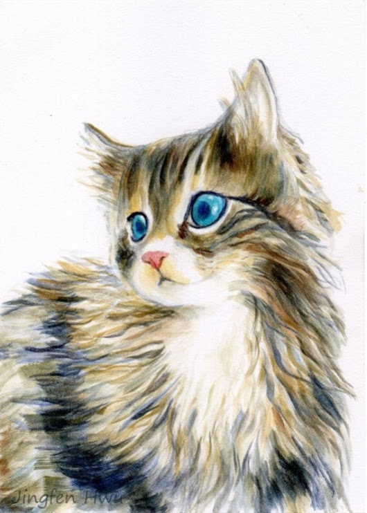 cat art print of a furry kitten cat portrait cat by JingfenHwu
