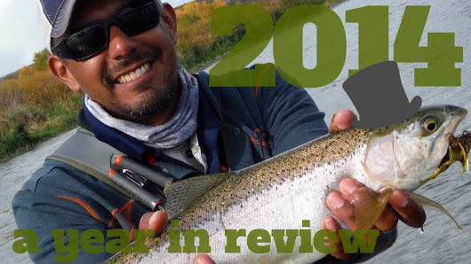 2014 a Year in Review
