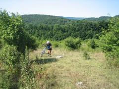hiking up to Gay Sharps Knob