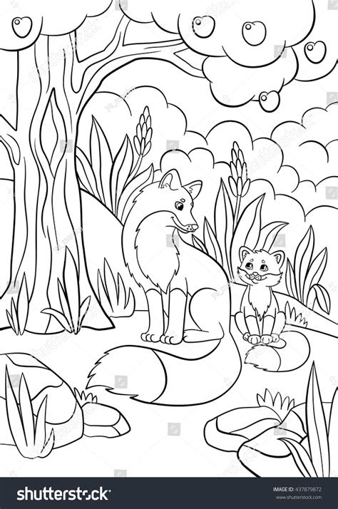 coloring pages wild animals mother fox stock vector