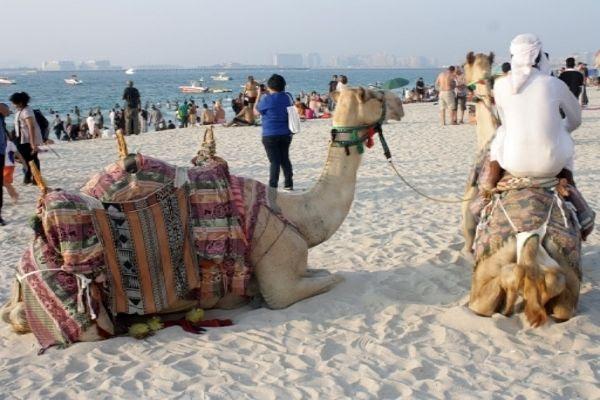 photo Dubai_Jumeirah_Beach_Residence203.jpg