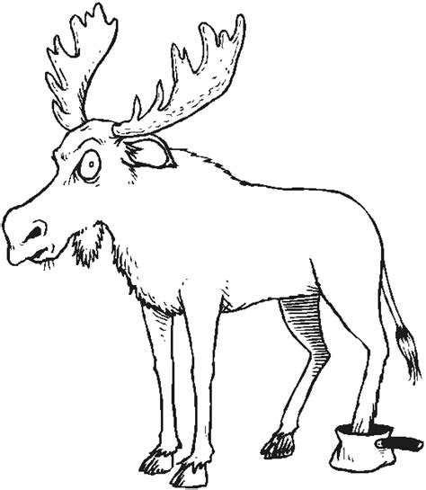 forest animals coloring pages coloringpagesabccom
