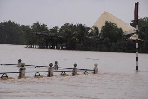 Đào Trọng Tứ, thủy điện, xả lũ, môi trường, lũ lụt miền Trung