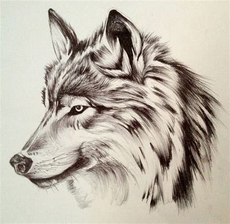 love  pencil  ink amazing art pinterest wolf