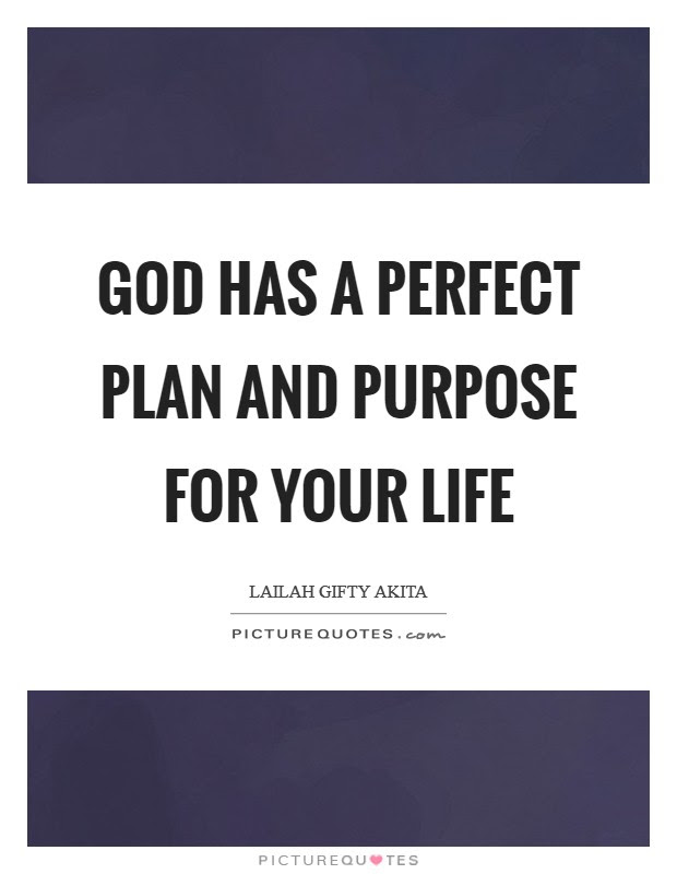 God Has A Perfect Plan And Purpose For Your Life Picture Quotes