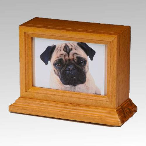Urn Dog Pet Ashes Urns Photo Urns