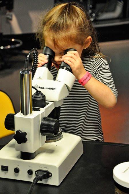 scientist lexie