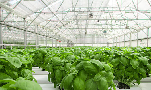 Global greenhouse company chooses AMOB for roll-bending needs • AMOB