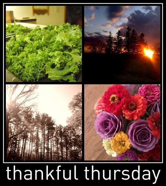 Thankful Thursday