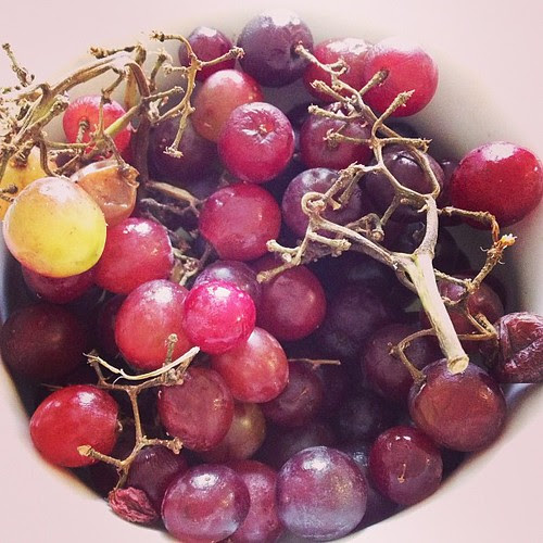 Day199 grapes are my favorite! #jessie365 #fruit 7.18.13