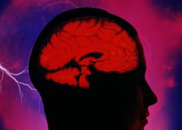 """""""Si conseguimos averiguar cómo funciona el cerebro, cualquier terapia será más segura y efectiva"""""""