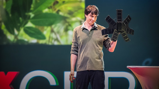 What can save the rainforest? Your used cell phone