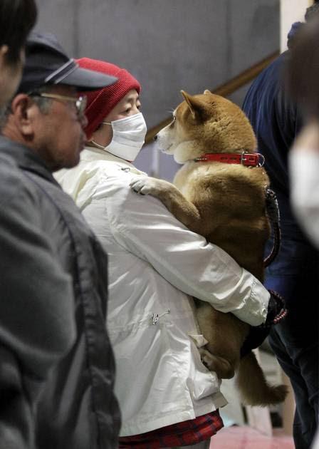 Homem e cachorro aguardam para fazer exame que mede nível de radiação