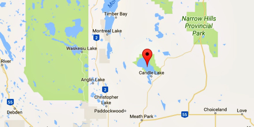Dead fish surface in Candle Lake north of Prince Albert ...