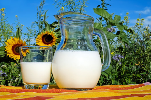 New Study Reaffirms the Health Benefits of Dairy