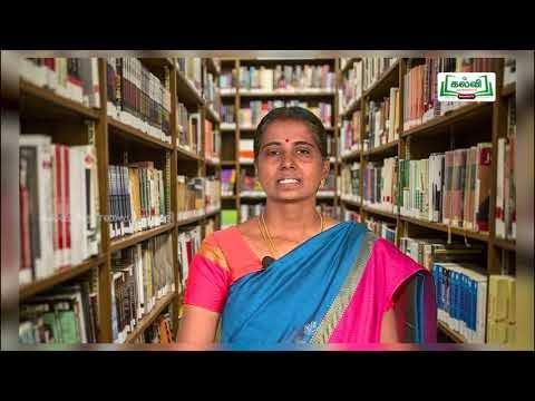7th Maths Bridge Course OMR தாள் - பொருள்களை வகைப்படுத்துதல் நாள் 7&8  Kalvi TV