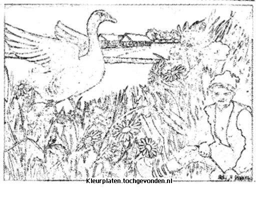 Mewarn10  Kleurplaten Niels Holgerson