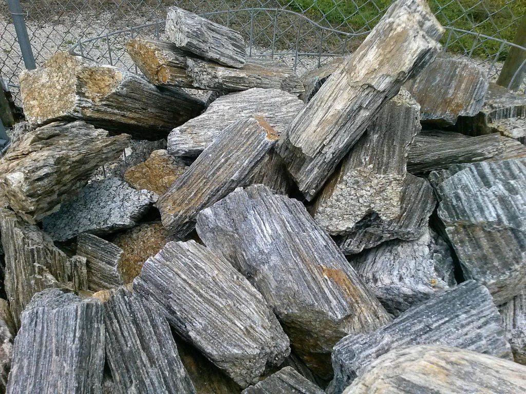 Wood Rocks At Bernies Rock Garden The Planted Tank