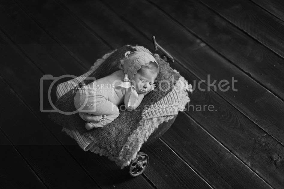 photo newborn-portraits-boise-idaho_zps1e83edd5.jpg