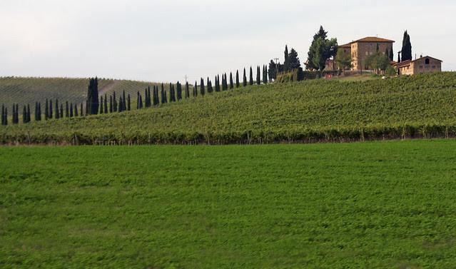Ruta del Chianti 05