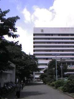 慶応病院夏真っ盛り