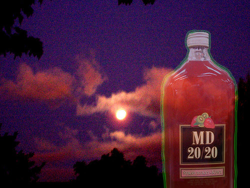 Was it the moon or the Mad Dog?