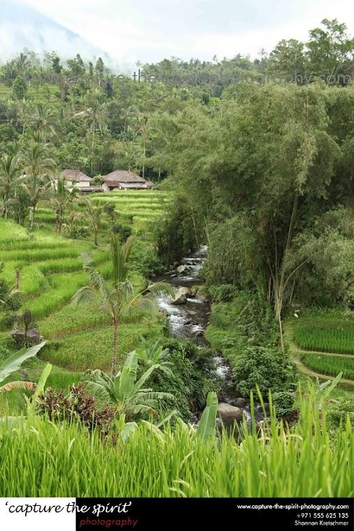 #bali #indonesia #subak #UNESCO #waterpalace