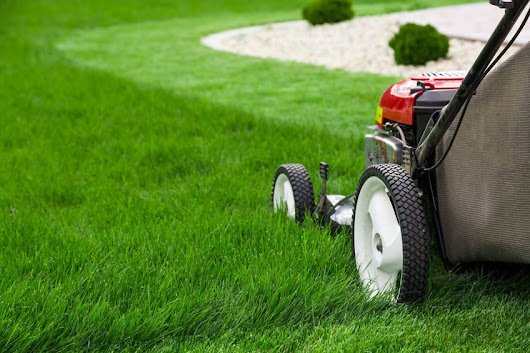 Get your Lawn Ready for the Cold Weather Season - Canada's Gardenland