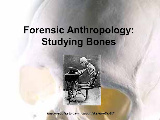 Forensic Anthropology: Studying Bones http://people.stu.ca/~mclaugh/skeleton8a.GIF