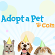 Orange, California - Pet Adoption. DogTag: You're It! has dogs and puppies to adopt.