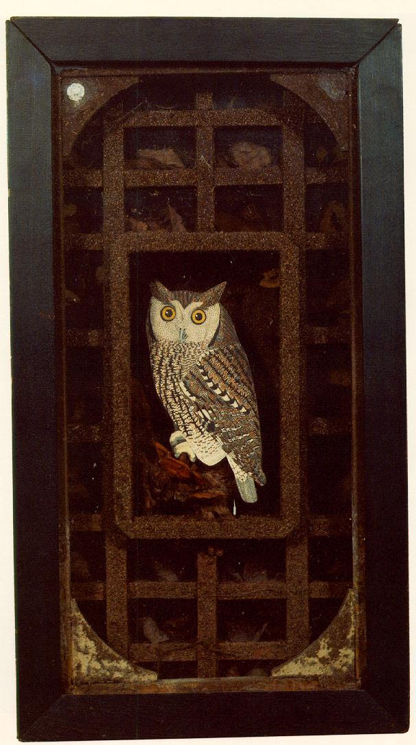 http://www.ibiblio.org/wm/paint/auth/cornell/cornell.grand-owl.jpg