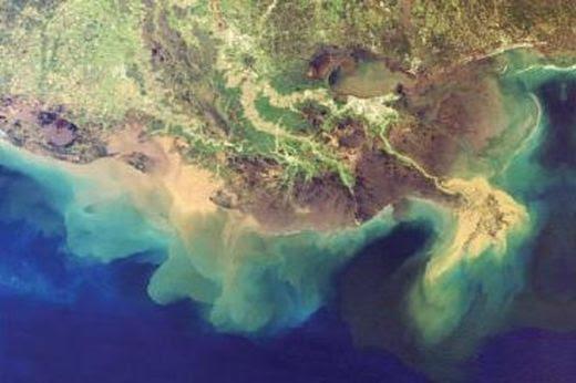 Une zone morte capturée par la NASA au large du delta du Mississippi.