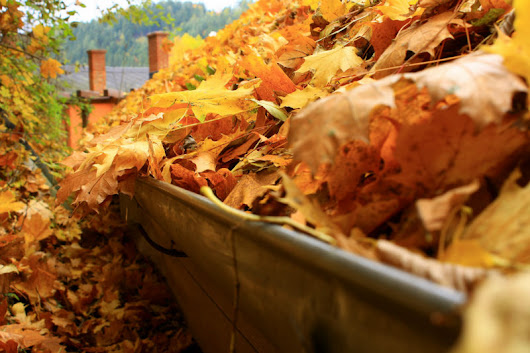 Are Your Gutters Ready for Fall? - Nashville TN - Gutterman of TN