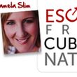 How to go from big idea to action | Escape From Cubicle Nation
