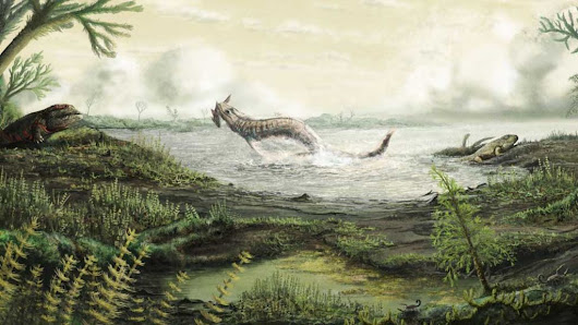 Scottish fossils tell story of first life on land - BBC News