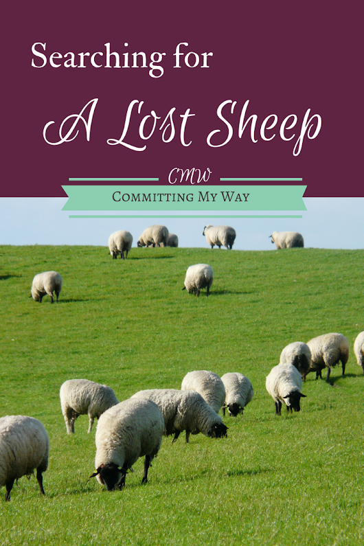 Searching for a Lost Sheep