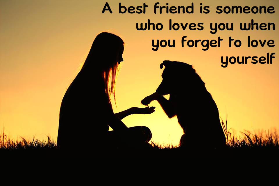 Best Friend Quotes Funny Cute Or Deep Quotes About Friends Best