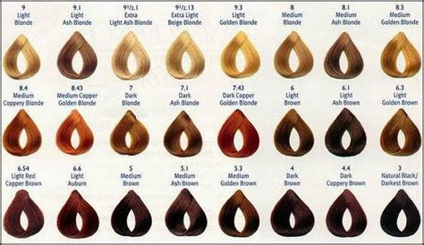 fall  love  hair color chart hair fashion