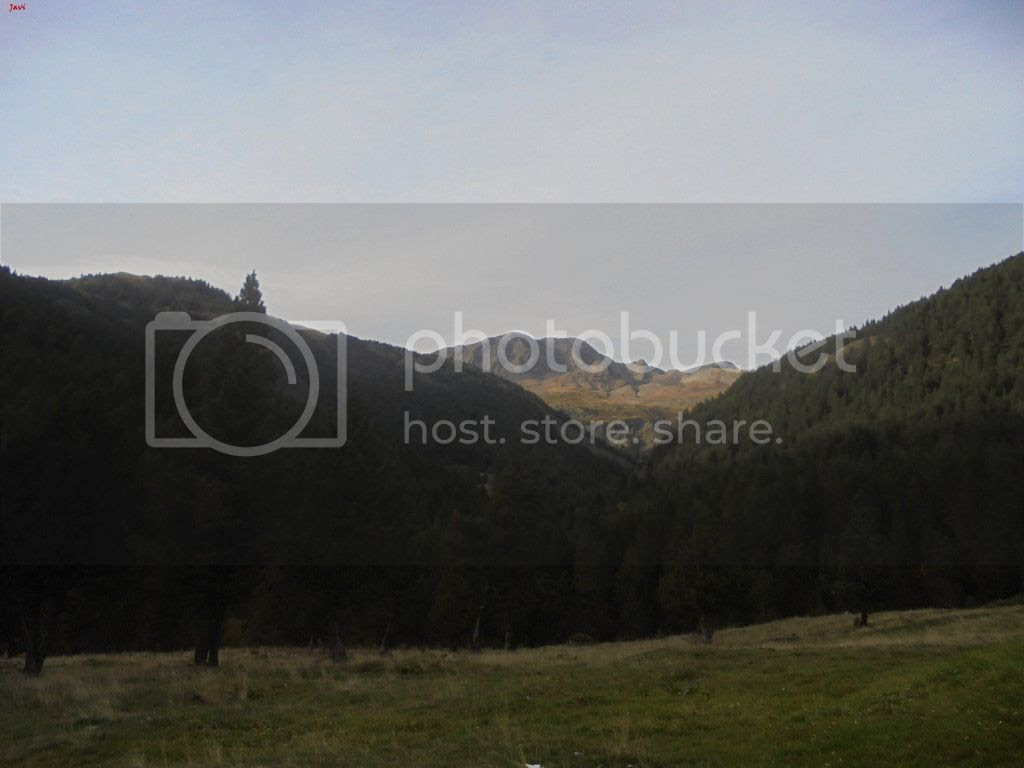 photo BACHIMALA - CULFREDAS 11-10-15 092_zpsh54ixnec.jpg