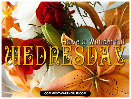 Have A Wonderful Wednesday Flowers Commentwarehouse Say It With