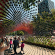 Portal of Awareness, An Arch Made Out of Coffee Cups in Mexico City