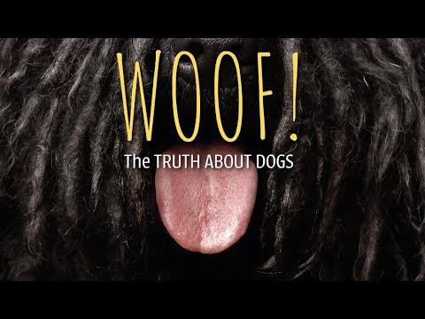 WOOF! Book Trailer