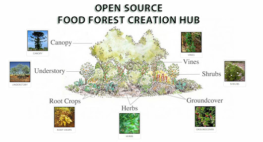 Food Forest Open Source Hub :: What | Why | How